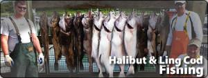 front_halibut