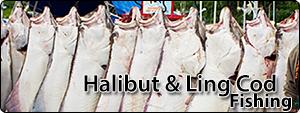 front_halibut_2